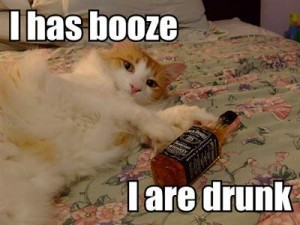 i-has-booze-i-are-drunk